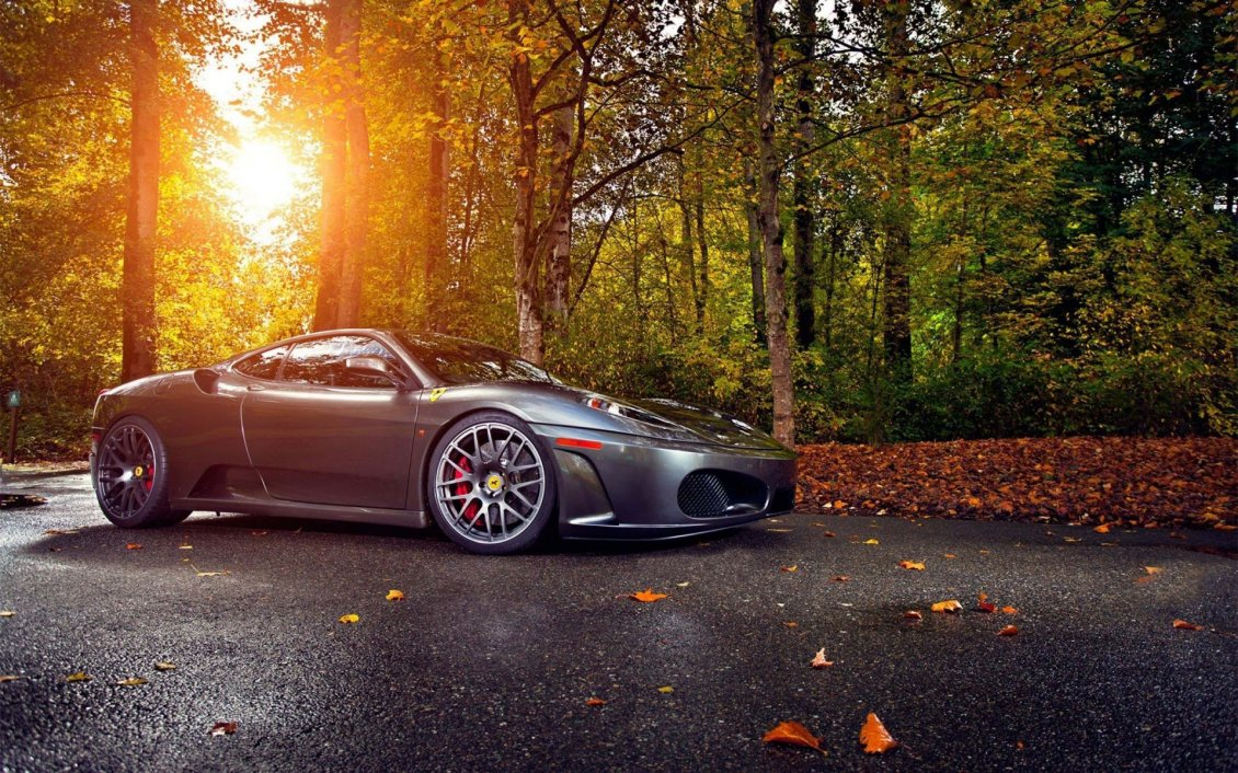 Download Wallpaper Luxury car in the forest - Autumn sun and leaves