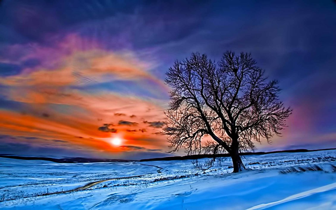 Download Wallpaper Sun on a winter day - Cold season of the year