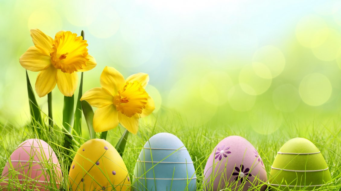 Download Wallpaper Five painted Easter eggs in the grass - Happy Spring time