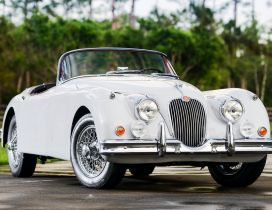 Front view from a classic Jaguar XK150