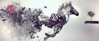 Abstract art disintegrating zebra