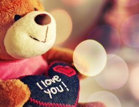 Teddy bear with a love message