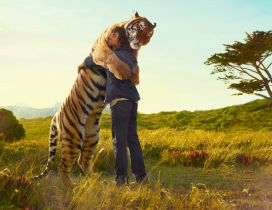 Man hugs a tiger HD
