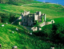 A castle on the hill and many sheeps grazing around