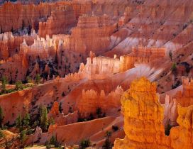 Bryce Canyon National Park in the Utah, United States