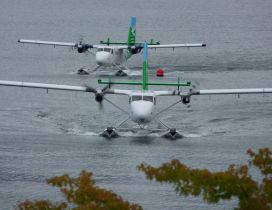 Two white and green seaplanes on the water