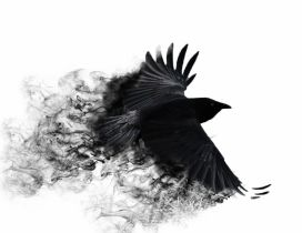 Abstract black crow with broken wings