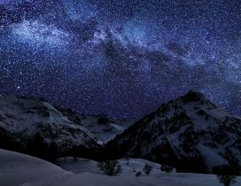 A winter night with many stars