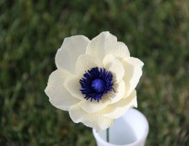 Beautiful white flower with blue center in a glass