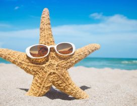 A starfish with sunglasses in the sand