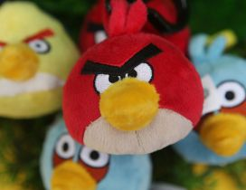 Angry Birds - Plush colored birds