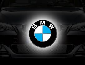 BMW logo - White, blue and black symbol