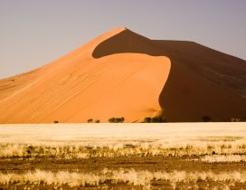 Sand dunes in the desert Namib