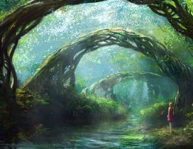 A girl in fantasy forest - HD wallpaper