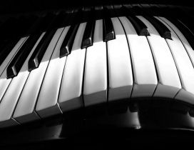 A curved piano - White and black HD wallpaper