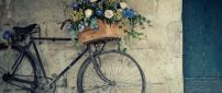 A basket with flowers on the old bicycle