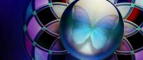 Blue butterfly in a circle - Beautiful artistic wallpaper