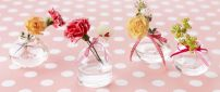 Romantic flowers with bows in bottles