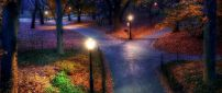Three paths in the park - night landscape