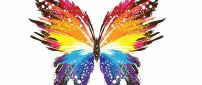 Multicolored drawing abstract butterfly