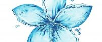 Awesome blue flower made of water
