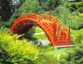 Japanese Garden - Orange small bridge in the park