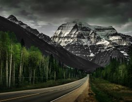 Road through the white and green mountains