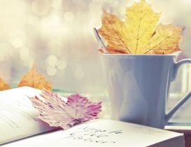 Colored leaves in the tea cup and on the book