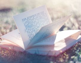 A opened book in the sunlight in the grass