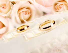 Golden rings near the pink roses - Wedding time