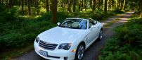White convertible Chrysler Crossfire in the forest