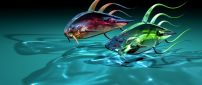 Abstract colorful fish in water - Fish race