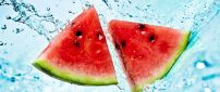 Two fresh watermelon in the water