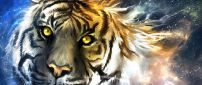 An abstract tiger head - Creative wild animals
