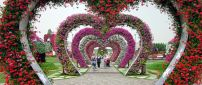 Red and pink flower tunnel in the form of hearts