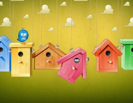 Cute colorful birds houses - HD wallpaper