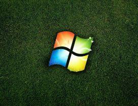 Windows logo in the green grass - Eco logo
