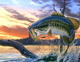 Colorful scary fish wallpaper - Fantasy fish