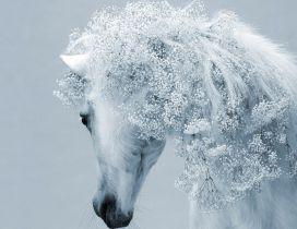Fantasy white horse - Fantastic horse hair