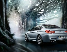 Beautiful BMW M6 Gran Coupe in a forest