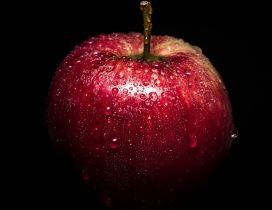 Fresh red delicious apple with water drops
