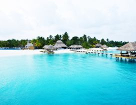 Seychelles Island - An amazing beach
