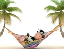 A cow relaxing in a colorful hammock