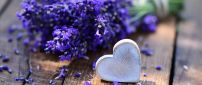 Purple lavender and a white heart made of wood