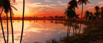 Palms around the lake - Amazing sunset landscape