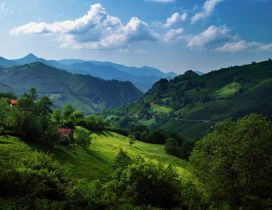 Cantabrian Mountains - Amazing green landscape