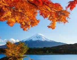 Autumn trees winter mountain - HD wallpaper
