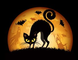 Black scary cat in the night of Halloween