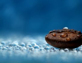 Drops of water on a big coffee bean - HD wallpaper
