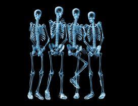 Funny skeletons naked - HD wallpaper